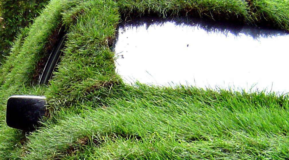 緑に覆われたエコカー