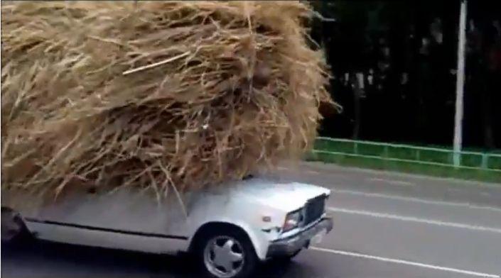 ロシアでフロントガラスが隠れるほどの干草を積んで走行する車が目撃される。